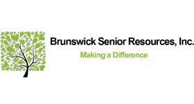 bsrinc logo